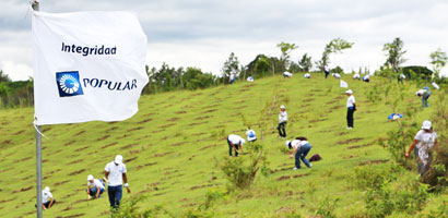 sc-popularreforestacion