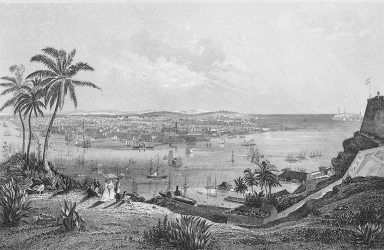 El esplendor natural del Caribe en un diccionario de 190 años recién publicado