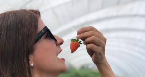 Buen Vivir con Luisa Feliz recorre el país en busca de los mejores sabores